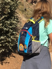 Butterfly on backpack