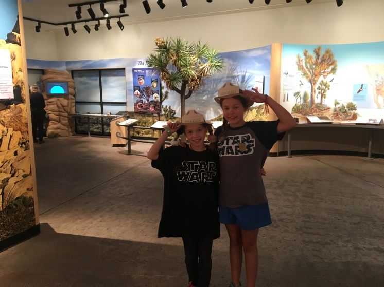 Junior ranger hats